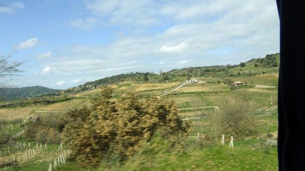Rogati na Sardiniji